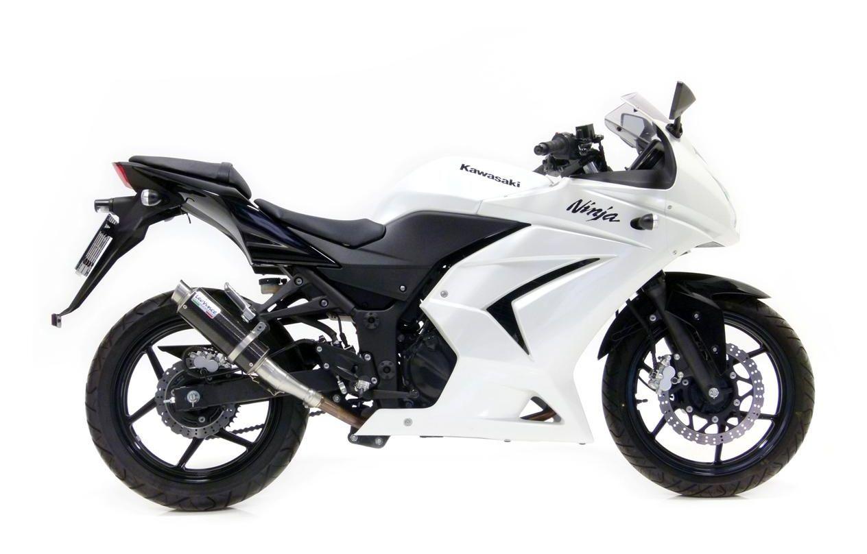 Leovince Gp Corsa Slip On Exhaust Kawasaki Ninja